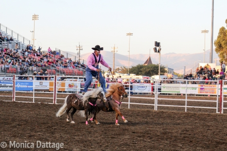 RodeoDayOne_Monica_Dattage-1