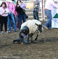 RodeoDayOne_Monica_Dattage-5